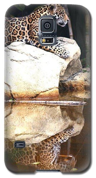 Jaguar At Rest Galaxy S5 Case