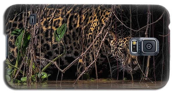 Galaxy S5 Case featuring the photograph Jaguar In Vines by Wade Aiken