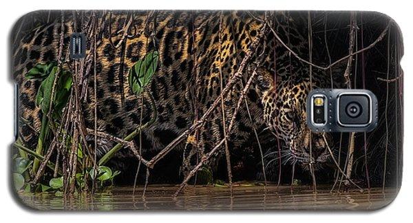 Jaguar In Vines Galaxy S5 Case by Wade Aiken