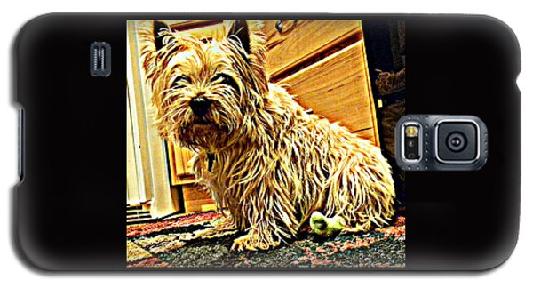 Jake The Dog Galaxy S5 Case
