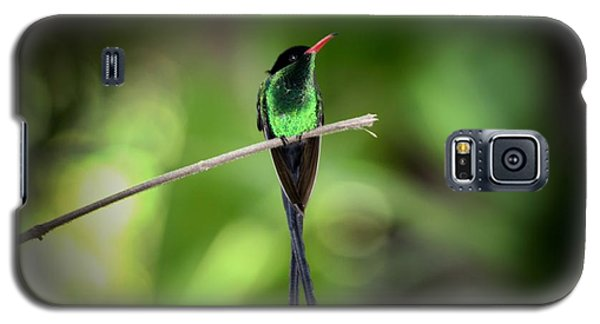 Jamaican Hummingbird Galaxy S5 Case by Marjorie Imbeau