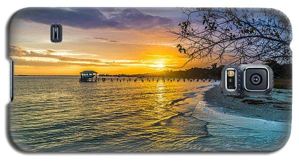 James Island Sunrise - Melton Peter Demetre Park Galaxy S5 Case