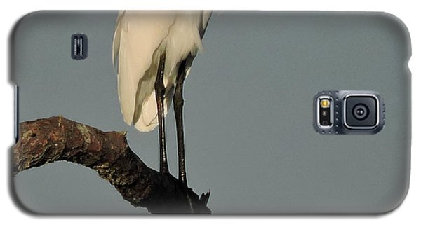 Galaxy S5 Case featuring the photograph January Egret by Peg Toliver
