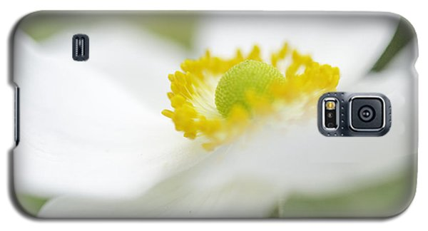 Japanese Anemone Galaxy S5 Case by Mary Angelini