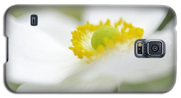 Japanese Anemone Galaxy S5 Case