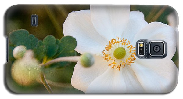 Japanese Anemone Galaxy S5 Case