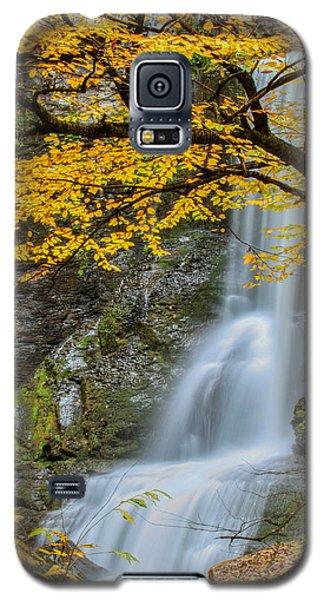 Japanese Falls Galaxy S5 Case