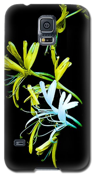Galaxy S5 Case featuring the photograph Japanese Honeysuckle by Bill Barber