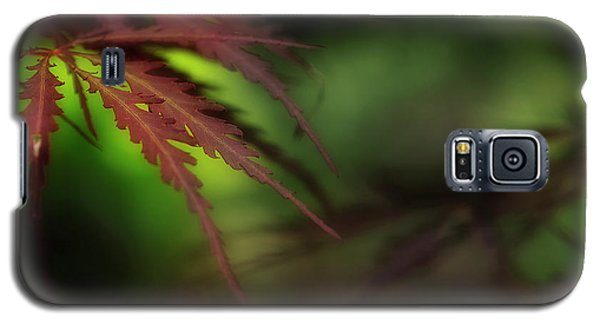 Galaxy S5 Case featuring the photograph Japanese Maple by Mike Eingle