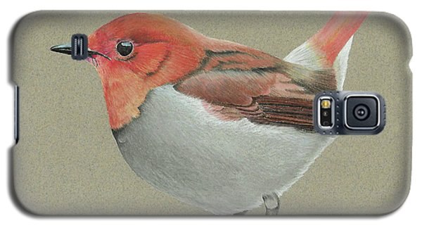 Galaxy S5 Case featuring the drawing Japanese Robin by Gary Stamp