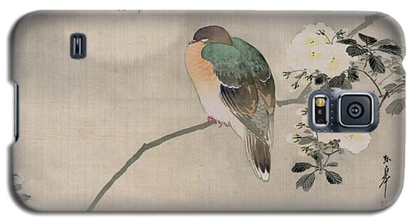 Japanese Silk Painting Of A Wood Pigeon Galaxy S5 Case