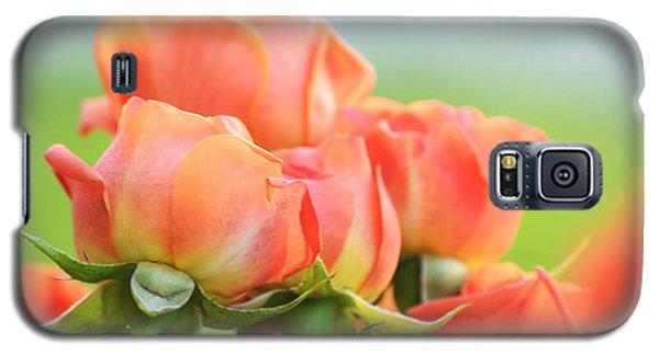 Jardin De Rosas Galaxy S5 Case