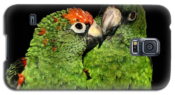 Galaxy S5 Case featuring the photograph Jardines Parrots by Debbie Stahre