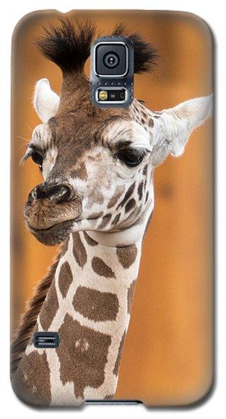 Jasmine Galaxy S5 Case
