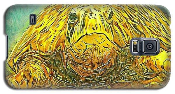 Jasmine The Turtle Galaxy S5 Case by Erika Swartzkopf