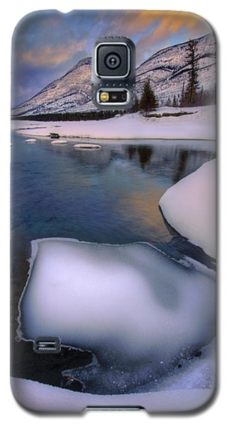 Galaxy S5 Case featuring the photograph Jasper In The Winter by Dan Jurak