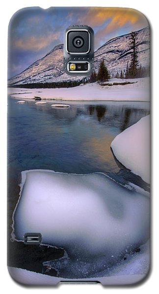 Jasper In The Winter Galaxy S5 Case