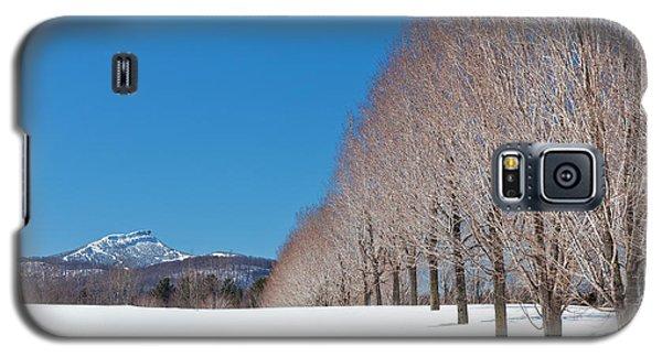 Jay Peak Winter Landscape Galaxy S5 Case