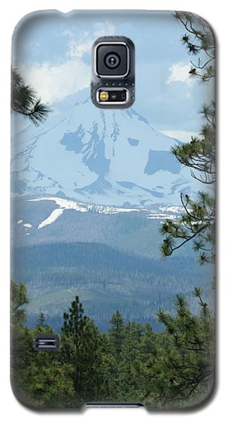 Galaxy S5 Case featuring the photograph Jefferson Pines by Laddie Halupa