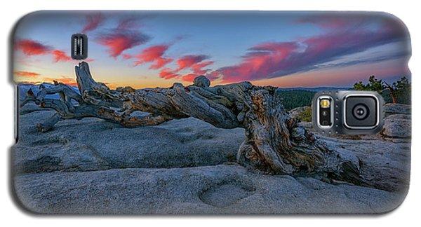 Galaxy S5 Case featuring the photograph Jeffrey Pine Dawn by Rick Berk