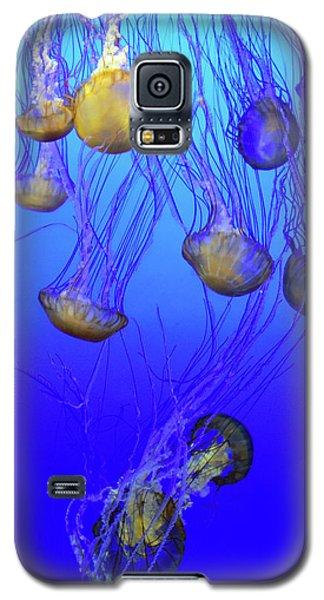 Jellies No. 408-1 Galaxy S5 Case