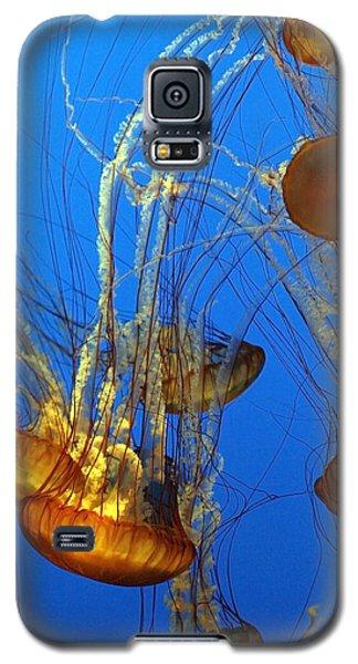 Jellyfish Family Galaxy S5 Case
