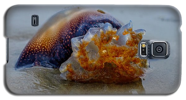 Jellys Last Swim Galaxy S5 Case
