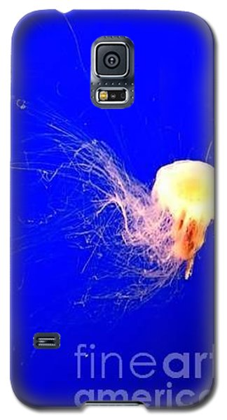 Jelly'sdance Galaxy S5 Case by Vanessa Palomino