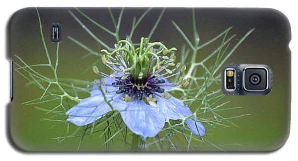 Jester's Hat Flower Galaxy S5 Case