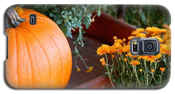 Galaxy S5 Case featuring the photograph Jet Pumpkin by Cathy Dee Janes