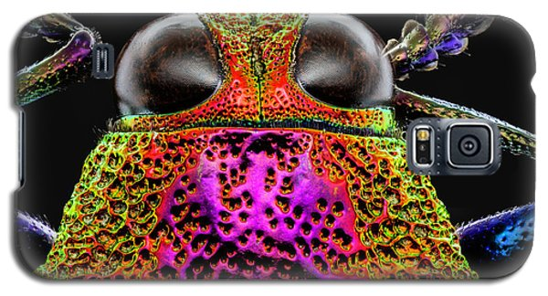 Jewel Beetle 3x Galaxy S5 Case