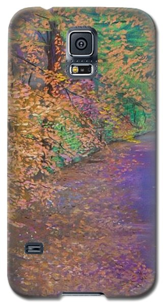John's Pond In The Fall Galaxy S5 Case