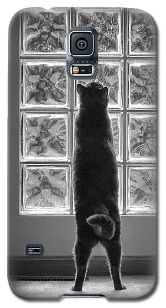 Joseph At The Window Galaxy S5 Case