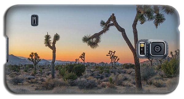 Joshua Sunset Galaxy S5 Case by Joseph Smith