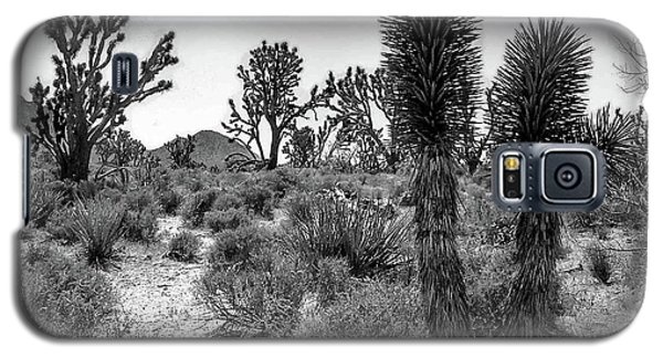 Joshua Tree 2 Galaxy S5 Case by Blake Yeager