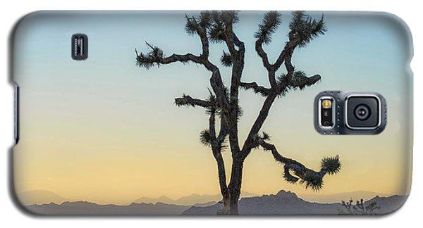 Joshua Tree Galaxy S5 Case