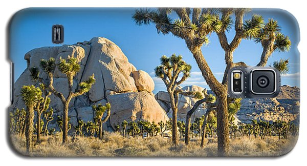 Joshua Tree And Intersection Rock Galaxy S5 Case