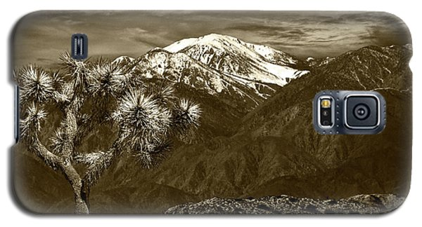 Galaxy S5 Case featuring the photograph Joshua Tree At Keys View In Sepia Tone by Randall Nyhof