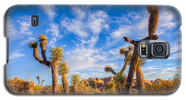 Galaxy S5 Case featuring the photograph Joshua Tree Dawn by Rikk Flohr