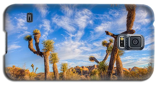 Joshua Tree Dawn Galaxy S5 Case