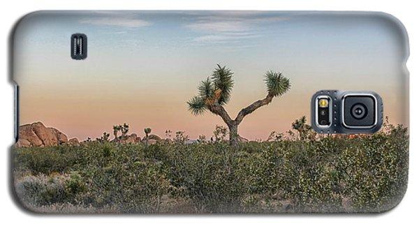 Joshua Tree Evening Galaxy S5 Case