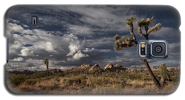 Joshua Tree Fantasy Galaxy S5 Case