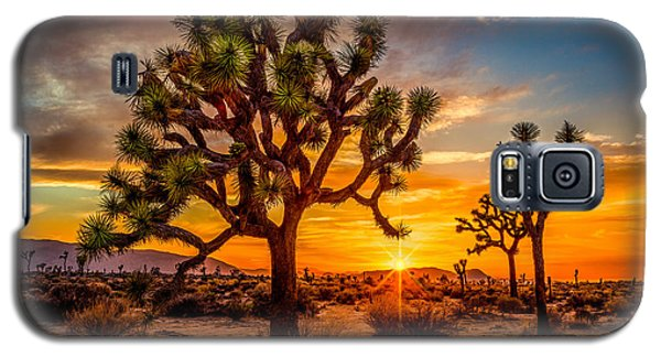 Joshua Tree Glow Galaxy S5 Case