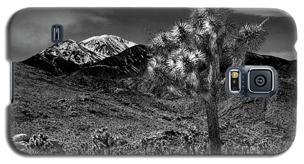 Galaxy S5 Case featuring the photograph Joshua Tree In Black And White In Joshua Park National Park With The Little San Bernardino Mountains by Randall Nyhof