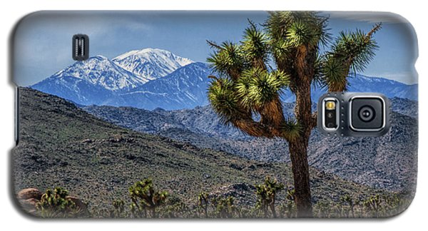 Galaxy S5 Case featuring the photograph Joshua Tree In Joshua Park National Park With The Little San Bernardino Mountains In The Background by Randall Nyhof