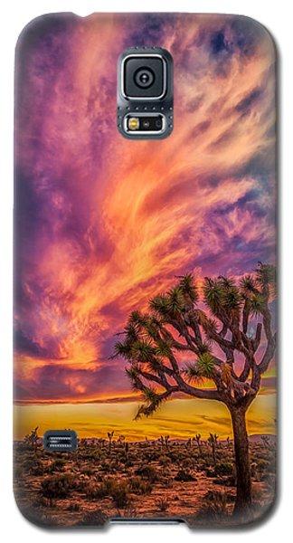 Joshua Tree In The Glowing Swirls Galaxy S5 Case