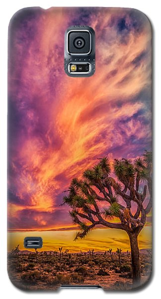 Joshua Tree In The Glowing Swirls Galaxy S5 Case
