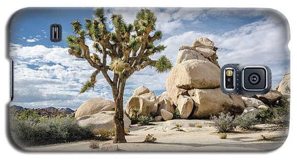 Joshua Tree No.2 Galaxy S5 Case