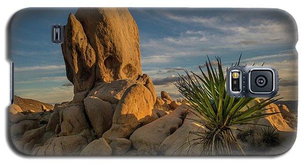 Joshua Tree Rock Formation Galaxy S5 Case