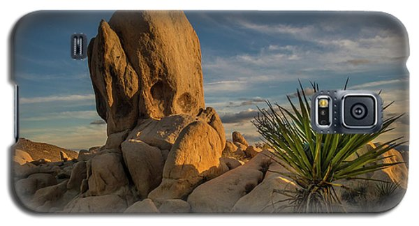 Joshua Tree Rock Formation Galaxy S5 Case